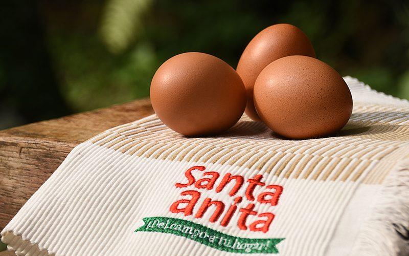 Foto huevos Santa anita